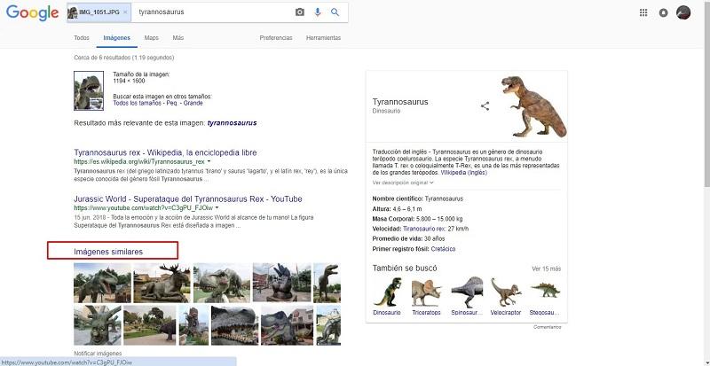 buscar imágenes basadas en imágenes similares google box fotos